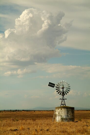 Windmill,Rural Geelong by Joe Mortelliti