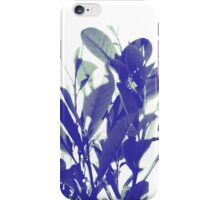Leaves - Dark and Light iPhone Case/Skin