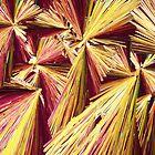 Quinine crystals under polarised light by Michael Dingley