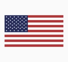 American Flag, Stars & Stripes, Pure & Simple, USA by TOM HILL - Designer