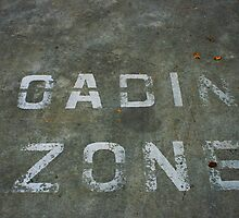 LOADING ZONE by Stephen Mitchell