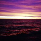 Purple Sunset at Sea by Clare McClelland