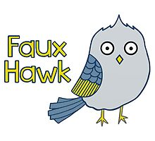 Faux Hawk by Stacey Roman