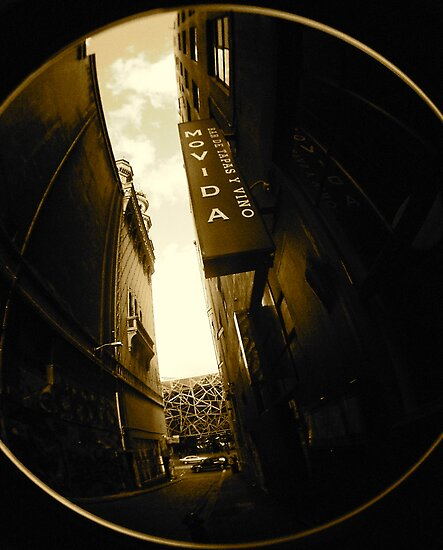 A Fish Point of View of Flinders Lane Alley by sid8chris