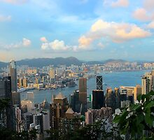 HK Panorama at Sunset - Hong Kong. by Tiffany Lenoir