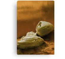 Sandstone rocks by a Pool Canvas Print