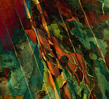 Abstract 1 by Sabine Spiesser