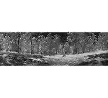 Wattle Park in infrared Photographic Print