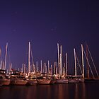 Docked Boats  by niq702