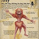 Practical Visitor's Guide to the Labyrinth - Firey Page 1 by Art-by-Aelia