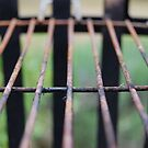 rusty grate by venkman
