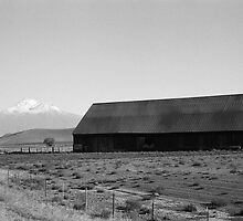 weathered scenes of Shasta by JPNation