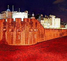 The Tower of London Poppies - 1 by Colin J Williams Photography