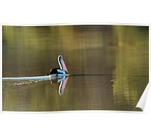 Drifting Along, Diamantina River,Qld Poster