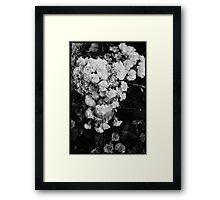 Sentaire Framed Print