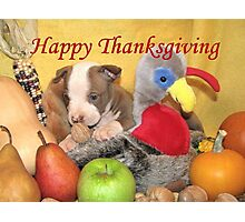 Thanksgiving (prints & cards w/words - all other items w/no words) Photographic Print