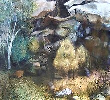 Landscape - Goulburn River National Park by Lyn Fabian