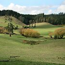 The Adelaide Hills by Leeo