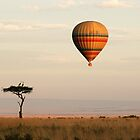Dawn flight over the Masai Mara by Sharon Bishop
