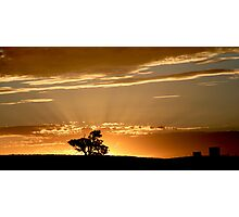 Last Rays - Nairne - Adelaide Hills Photographic Print