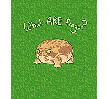 What ARE Frogs? (Desert Rain edition) Photographic Print