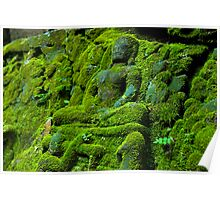 Mossed Up Buddah Poster