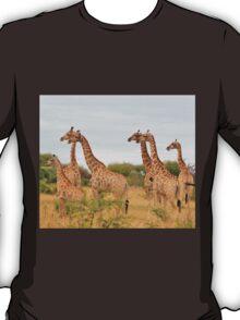 Giraffe Humor - African Wildlife - Amazing Stare T-Shirt