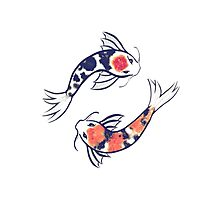 Swirling Koi Photographic Print