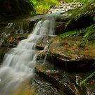Leura Cascades .. take 2 by Michael Matthews