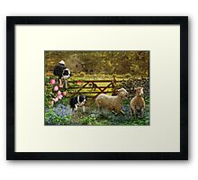 Collecting The Strays Framed Print