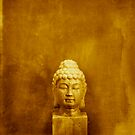 Buddha by Antaratma Images