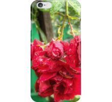 Wet red roses iPhone Case/Skin