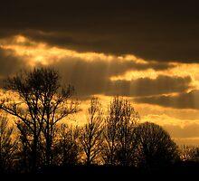 golden sky 2 by gashwen