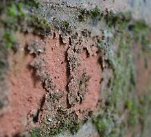 Decaying Wall by KHDD