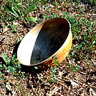 Discarded Bowl by Christina Tang