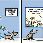 obedience training  by David Stuart