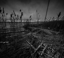 On the wrong side of the lake 12 by HappyMelvin