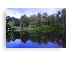 Big Brook Dam - Pemberton Western Australia Canvas Print
