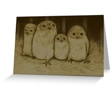 Owlets Greeting Card