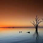 Lake Sunset by smylie