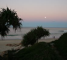Shrubs and Beach by Paul Barber