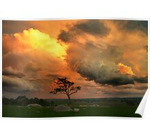 Late Storm 1 - Dog Rocks Poster