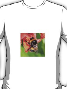 Bumble Bee on Flower of Runner bean T-Shirt