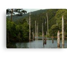 Lake Elizabeth Otway's Canvas Print