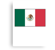 Mexican Flag, Flag of Mexico, Bandera de México, Pure & simple Metal Print