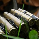 .308 Winchester. by Michael Rowlands