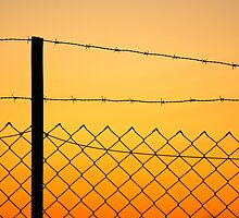 Fence at sunset by Martin Pot
