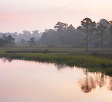 Morning on a Tidal Creek by Charlie