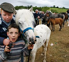 Spancilhill horse fair by James  Horan