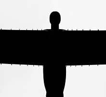 Wingspan by Deb Maidment